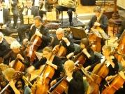 cellosmall